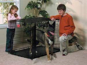 MidWest Life Stages Klatka dla psa 122x76x84cm