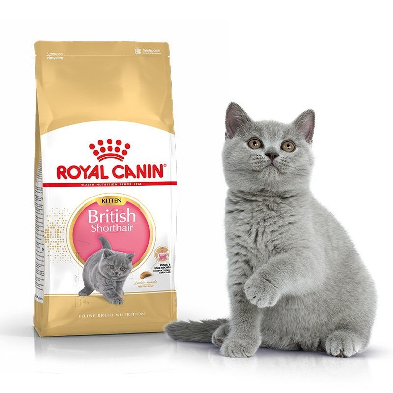 Royal Canin Kitten British Shorthair 34