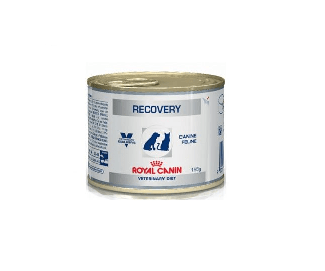 Royal Canin Veterinary Diet Recovery Canine Feline 195g