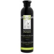 Derma Pharm Champion Szampon dla szczeniąt sierść biała jasna 250ml