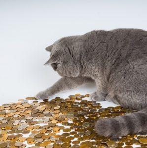 koty z bajek i filmów