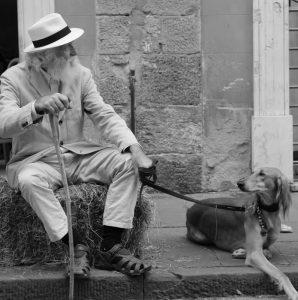pies dla dziadka