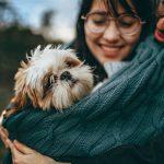 Pies – najczęstsze błędy wychowawcze