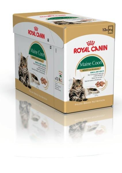Royal Canin Maine Coon Adult saszetka 6x85g