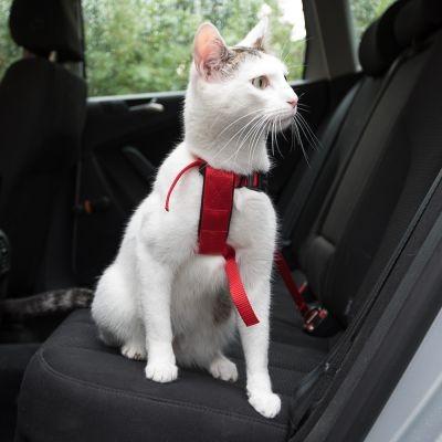 Trixie Szelki samochodowe dla kota