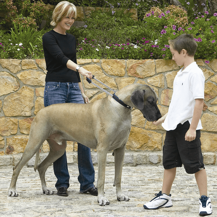 Patento Pet Obroża Sport czarna