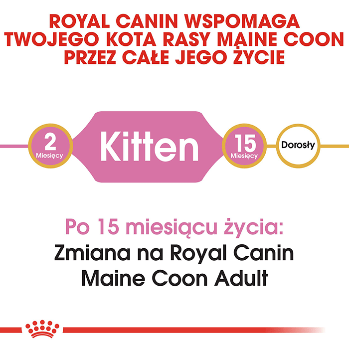 Royal Canin Maine Coon Kitten 36 10kg