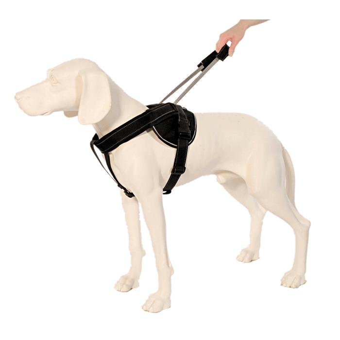 Patento Pet Szelki Jockey z uchwytem czarne