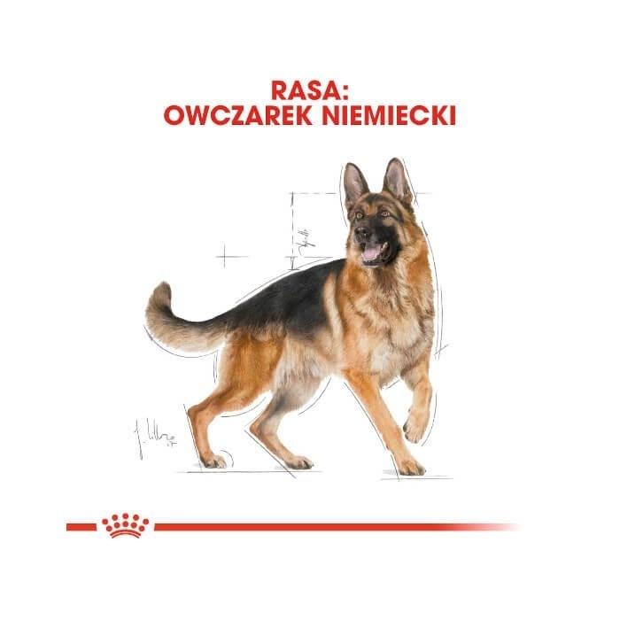 Royal Canin Adult German Shepherd