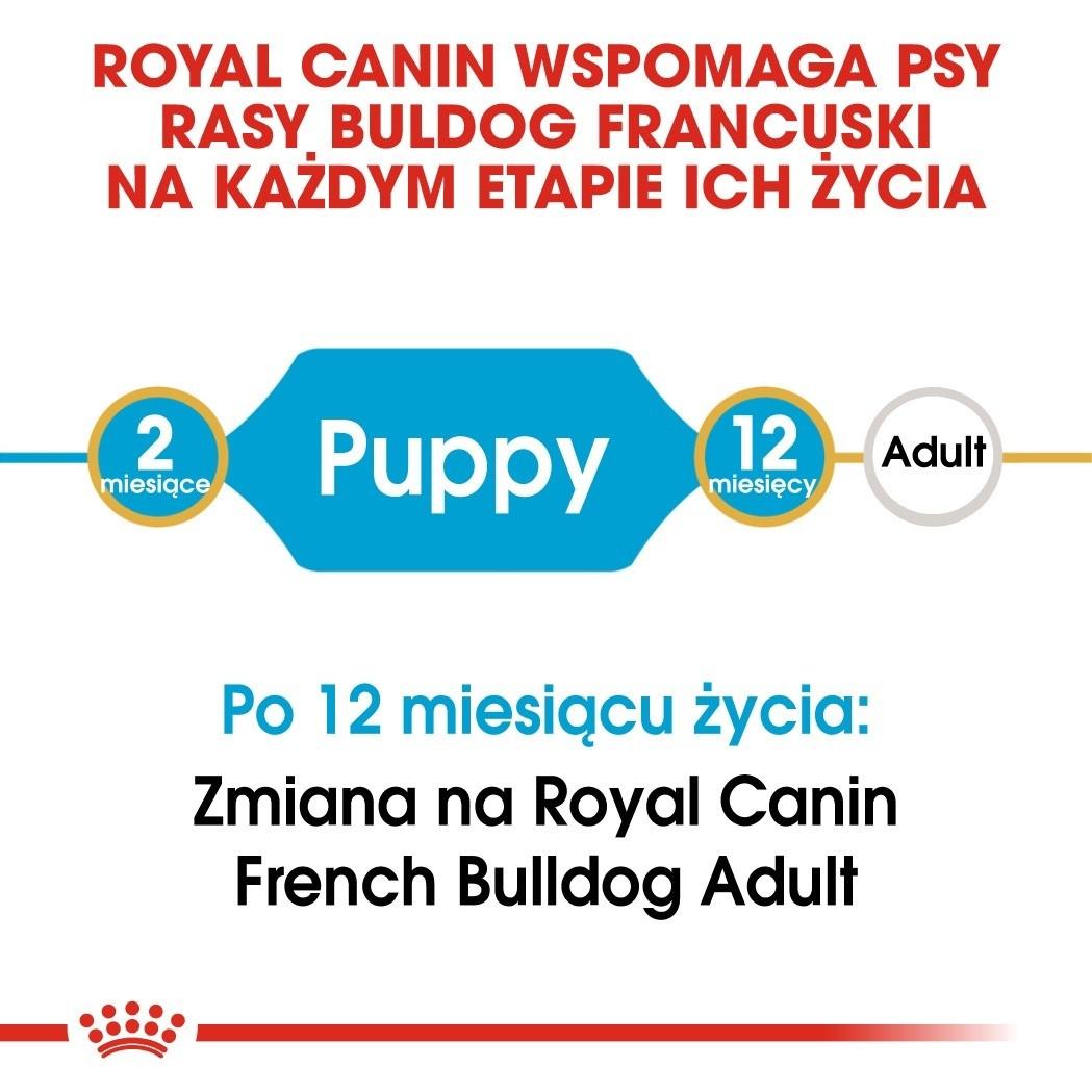 Royal Canin Puppy French Bulldog