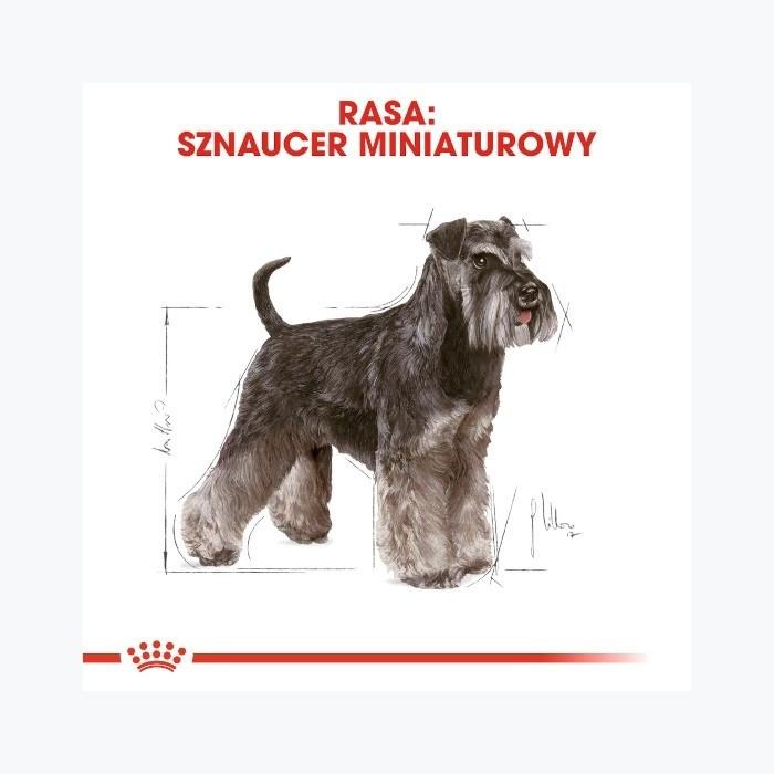 Royal Canin Adult Miniature Schnauzer