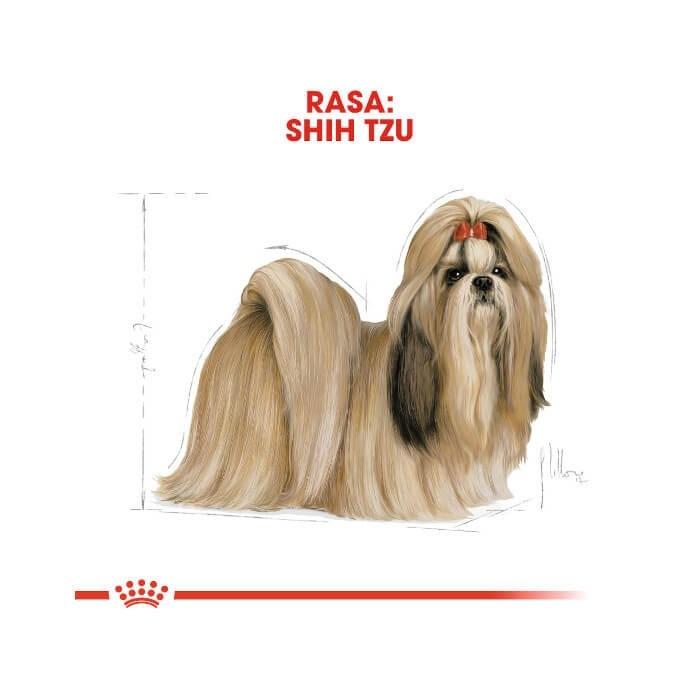 Royal Canin Adult Shih Tzu