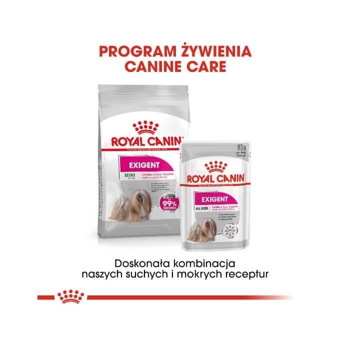 Royal Canin Mini Exigent CCN
