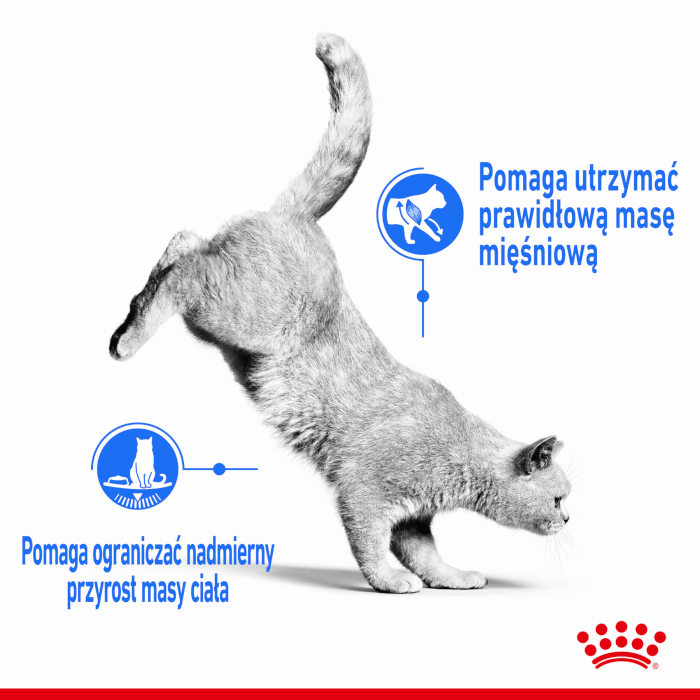 Royal Canin Light Weight Care FCN