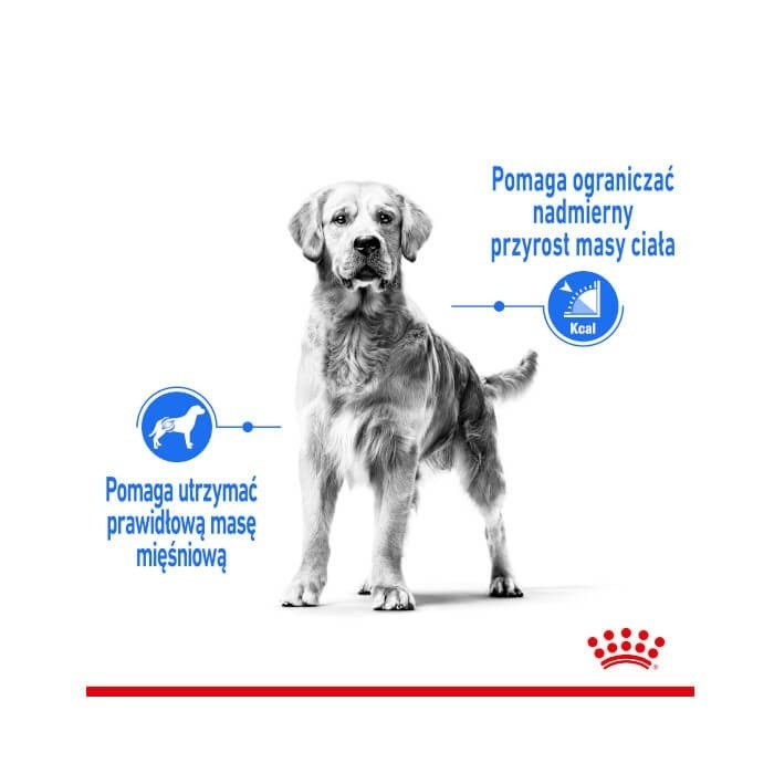 Royal Canin Maxi Light Weight Care CCN
