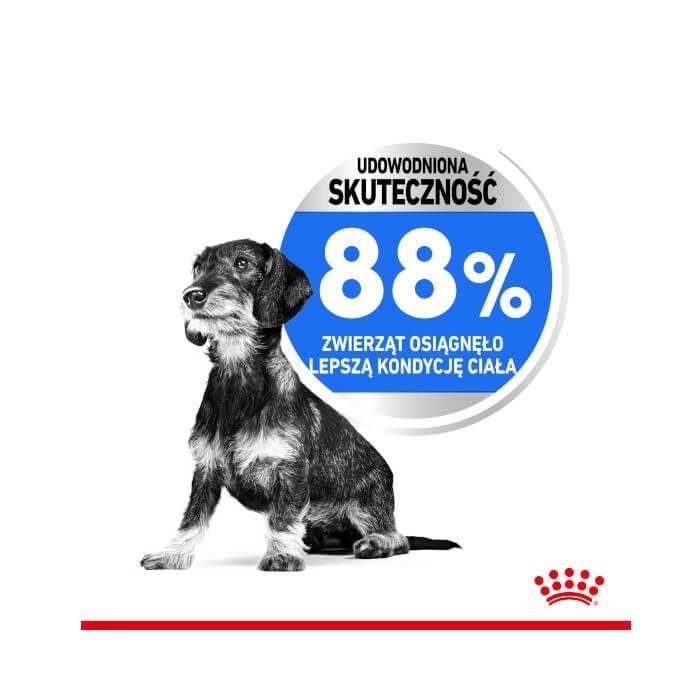 Royal Canin Mini Light Weight Care CCN