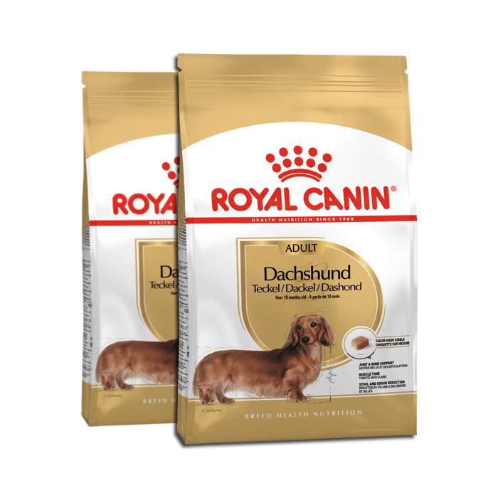 Royal Canin Adult Dachshund