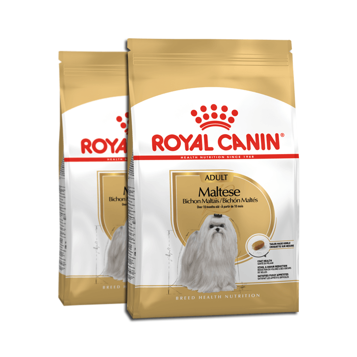 Royal Canin Adult Maltese