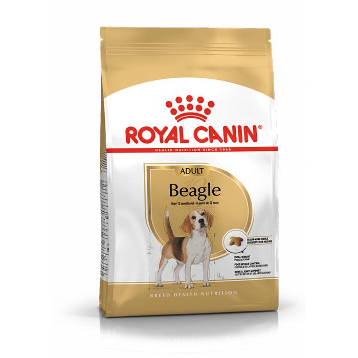 Royal Canin Adult Beagle
