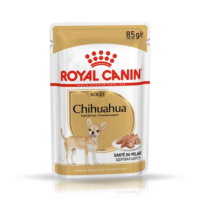 Royal Canin Adult Chihuahua saszetka 12x85g