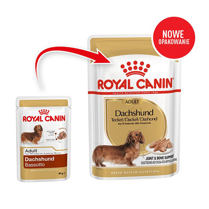 Royal Canin Adult Dachshund saszetka 6x85g