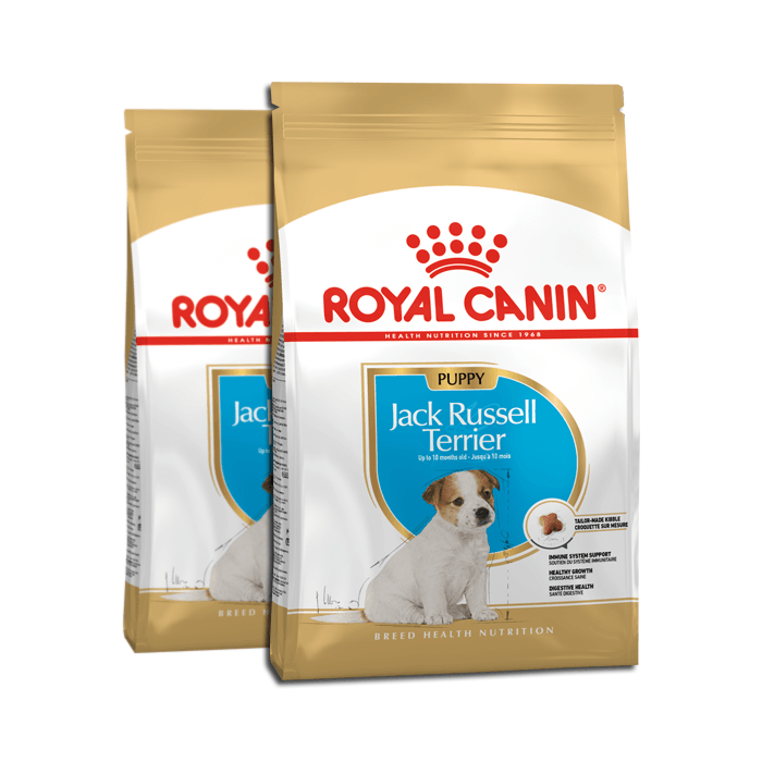 Royal Canin Puppy Jack Russell Terrier