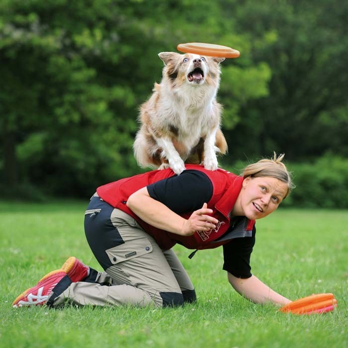 Trixie Dysk Dog Activity