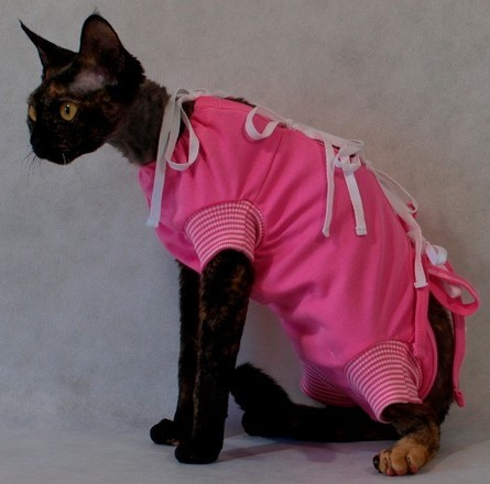 Preparaty lecznicze - Grande Finale Koszulka pooperacyjna dla kota 25cm