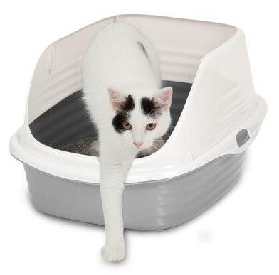Kuwety, łopatki dla kota - Petmate Stay Fresh Kuweta z nakładką 47 x 37 x 25cm