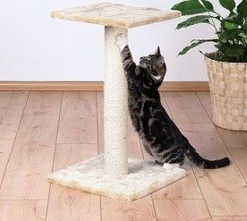 Drapaki, tunele dla kota - Trixie Drapak Espejo beż 69cm