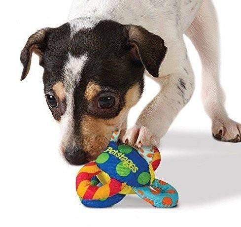 Zabawki - Petstages Piłka z pętelkami dla małych psów