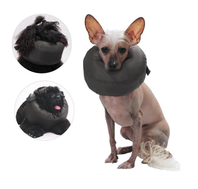 Preparaty lecznicze - Grande Finale Kołnierz pooperacyjny dla kota, psa rozmiar 3