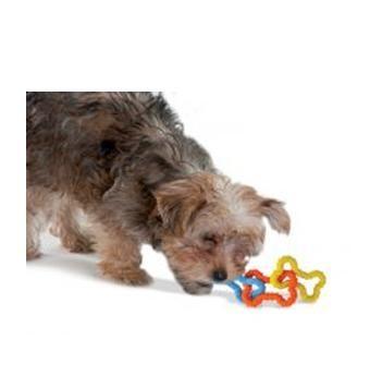 Zabawki - Petstages  Gumowe kosteczki
