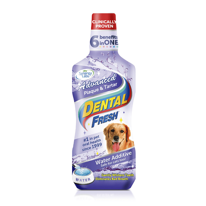 Higiena, pielęgnacja oczu, uszu, zębów - Dental Fresh Płyn usuwający kamień i osad