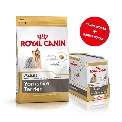 Karmy suche dla psa - Pakiet Royal Canin Yorkshire Adult 1,5kg + 12szt. saszetek