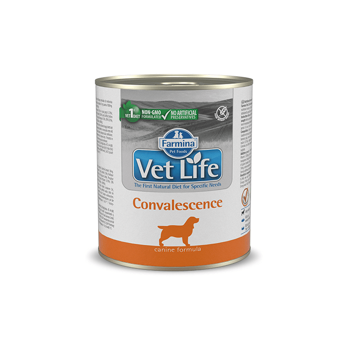 Karmy mokre dla psa - Farmina Vet Life Natural Diet Dog Convalescence 300g