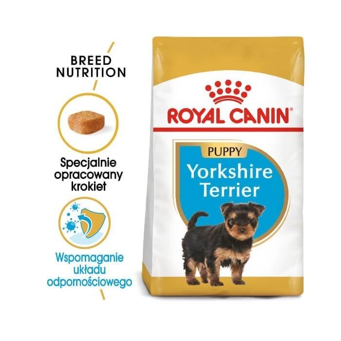 Karmy suche dla psa - Royal Canin Puppy Yorkshire Terrier