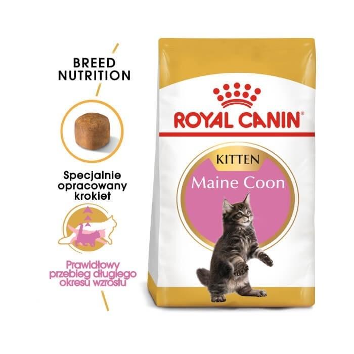 Karmy suche dla kota - Royal Canin Maine Coon Kitten