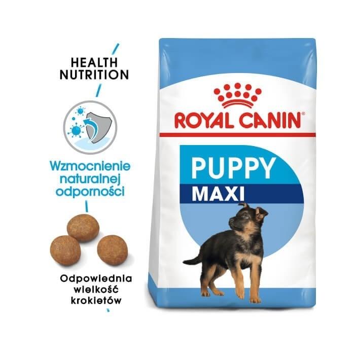 Karmy suche dla psa - Royal Canin Maxi Puppy