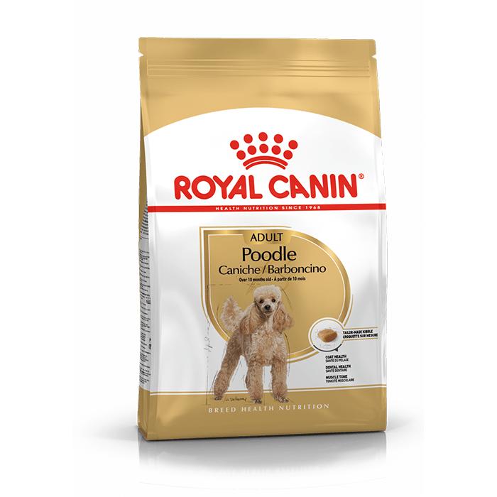 Karmy suche dla psa - Royal Canin Adult Poodle 1,5kg