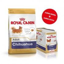 Pakiet Royal Canin Chihuahua 1,5kg + 12 szt. saszetek