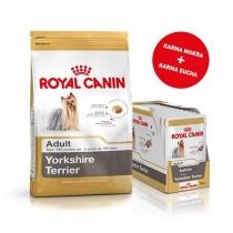 Pakiet Royal Canin Yorkshire Adult 1,5kg + 12szt. saszetek