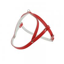 Champion Szelki czerwone