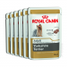 Karmy mokre dla psa - Royal Canin Yorkshire Terrier Adult 6x85g