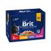 Karmy mokre dla kota - Brit Premium Family Plate 100g x 12 (multipak)