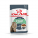 Karmy mokre dla kota - Royal Canin Digest Sensitive Feline 85g