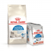 Karmy suche dla kota - Royal Canin Indoor Appetite Control