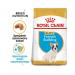 Karmy suche dla psa - Royal Canin Puppy French Bulldog