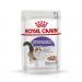 Karmy mokre dla kota - Royal Canin Sterilised Feline 85g